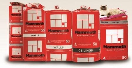 mammoth insulation installers